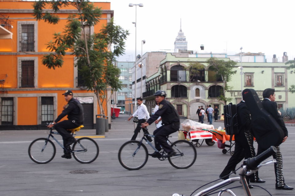 Community security patrols in Mexico City, Mexico